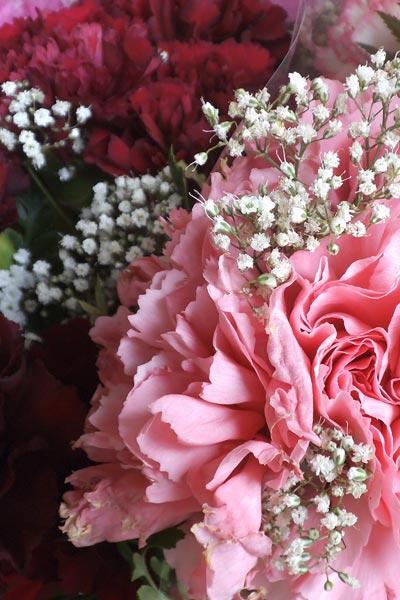 market-carnations