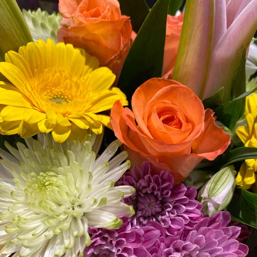 bouquet of white spiders, purple pom cushions, orange roses, yellow gerberas and more