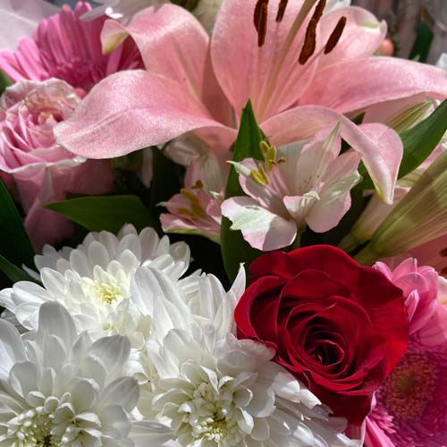 bouquet of pink lilies, pink roses, burgundy mini carnations, pink gerberas and more.