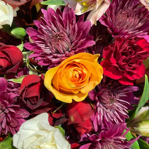 mixed bouquet of white carnations, purple pom cushions, red spray roses and orange roses.