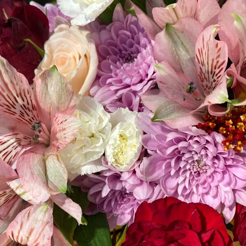 Bouquet of pink alstroemerias, red carnations, white mini carnations and more.